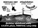 """Birthday skateboard party"""